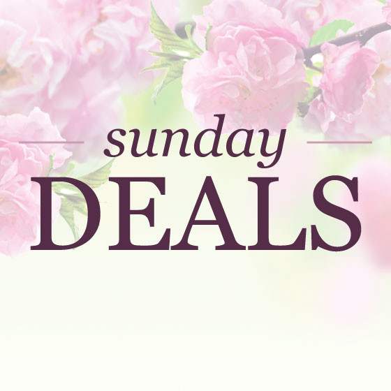 Sunday deals | www.shoppingmycloset.com