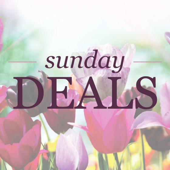 shopping deals and coupons | www.shoppingmycloset.com
